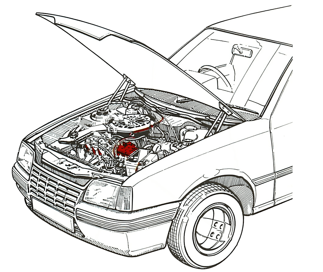 Start Stop Vehicle – Battery Replacement WARNING